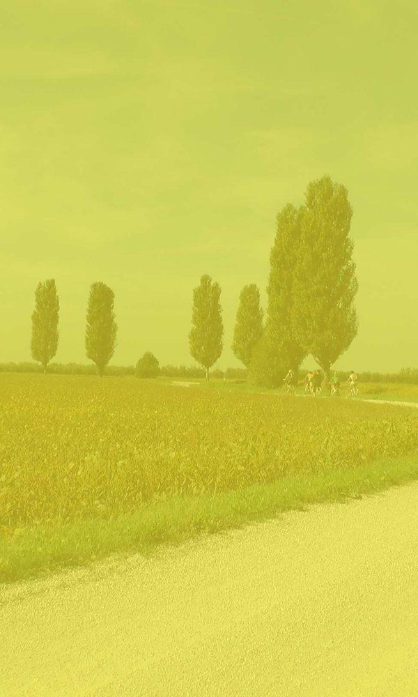 percorso delle verdure a cavallino treporti